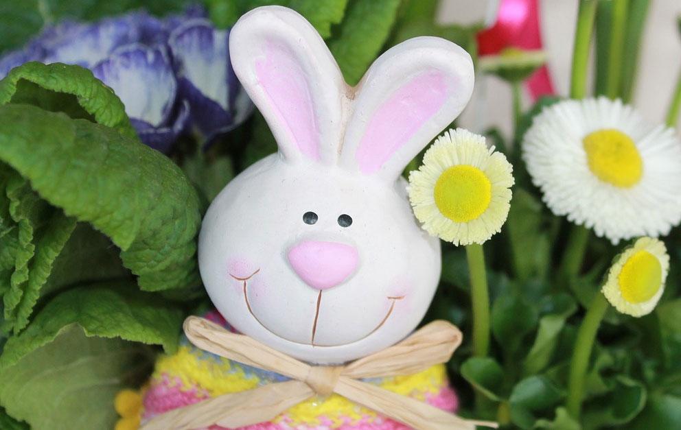 Masa solna - idealna do zrobienia wielkanocnego królika