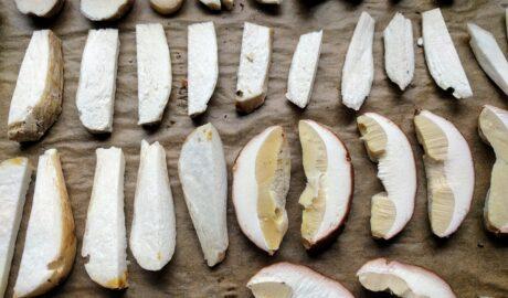 Pokrojone grzyby przygotowane do suszenia