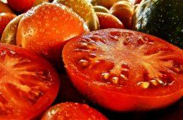 Jak przygotować własne nasiona pomidora