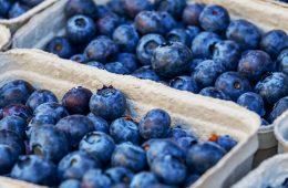 Jak mrozić borówki amerykańskie i czarne jagody