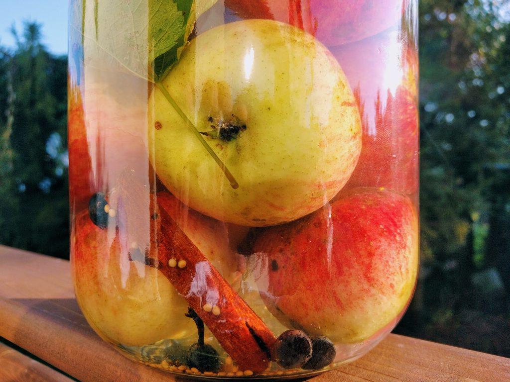 Kiszone jabłka w słoju