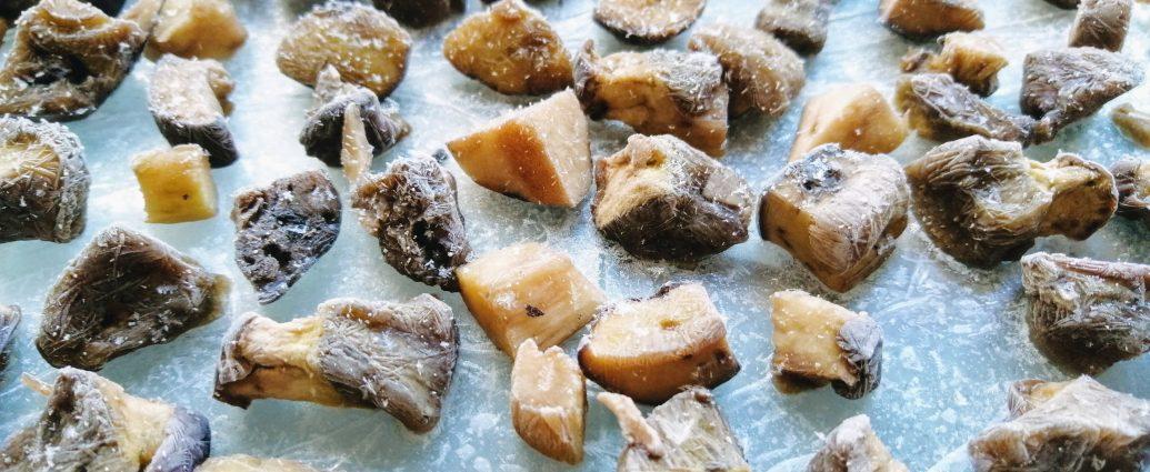 Mrożenie grzybów - jak przygotować grzyby do mrożenia
