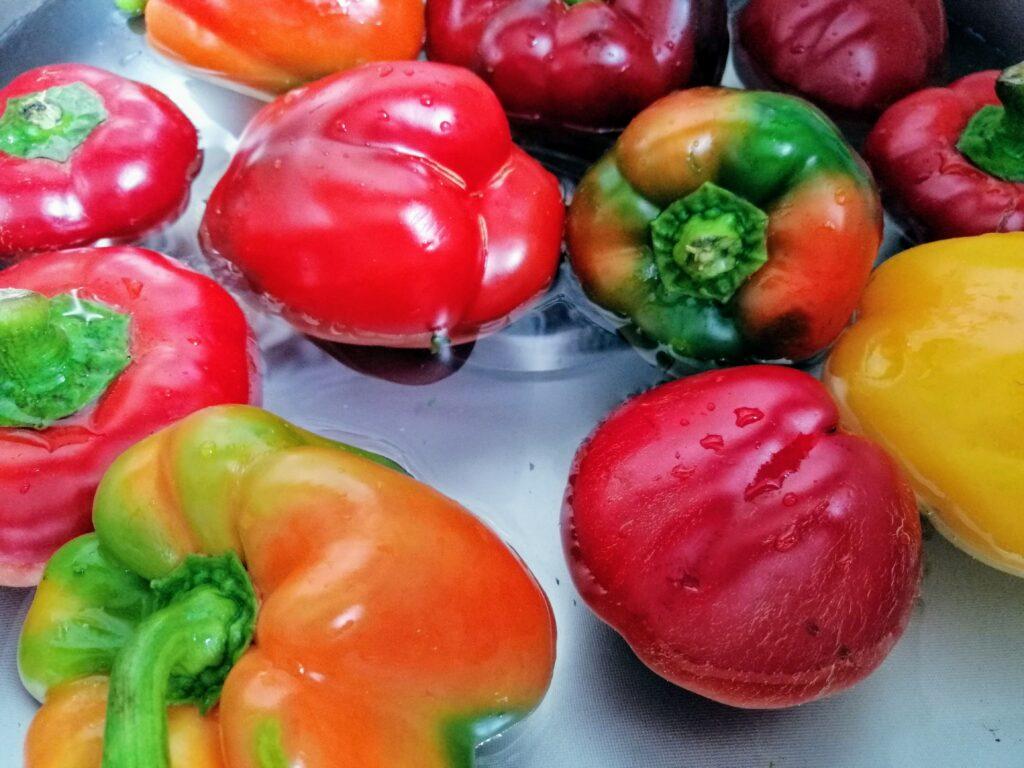 Papryka czerwona, zielona i pomarańczowa
