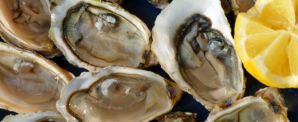 Świeże ostrygi - otwarte muszle ostryg z cytryną