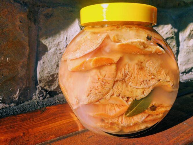 Kiszone rydze w słoju - kiszenie grzybów