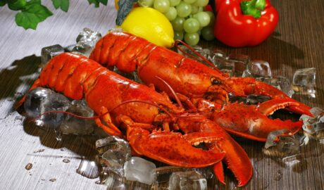 Ugotowane homary na kostkach lodu